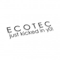 Ecotec Just Kicked In You