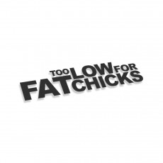 Too Low For Fat Chicks