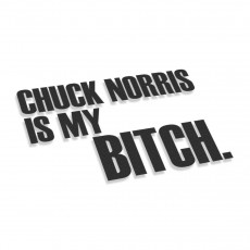 Chuck Norris Is My Bitch