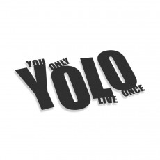 YOLO You Only Live Once V6
